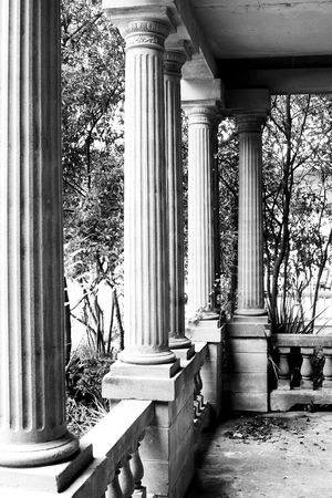 greek revival columns on abandoned mansion