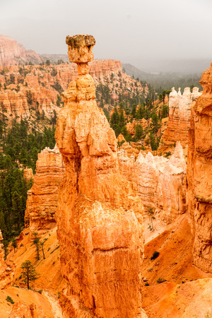 Vista of colorful sandstone pinnacles and spires in Bryce Canyon N.P. in Utah.