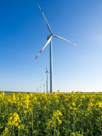 Photo for Wind turbines or windmills creating electricity out of wind energy on yellow rape or canola field, Nordfriesland, Germany. - Royalty Free Image