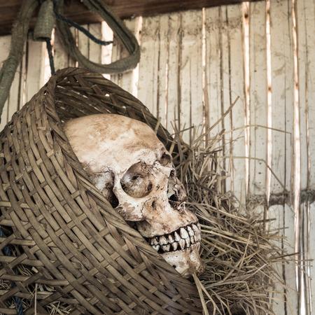 Still life,  human skull in bamboo basket