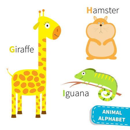 Letter G H I Giraffe Hamster Iguana Zoo alphabet. English abc with animals Education cards for kids Isolated White background Flat design Vector illustrationのイラスト素材