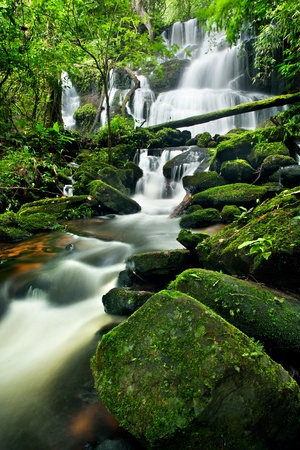 waterfall in thai national park. In the deep forest on mountain.