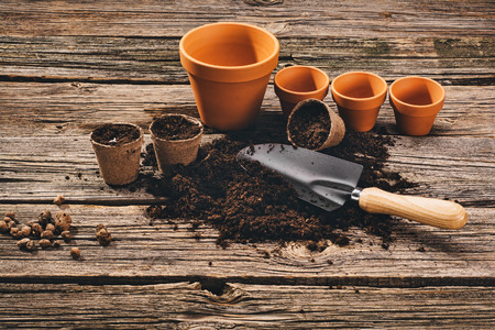 Preparing for a seasonal transplantation of plant or flower, in a gardening, vintage shed near house. Product still life image. Planting in the garden concept photograph.