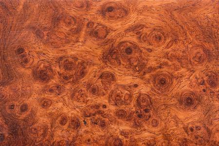 Photo pour Macro Ormosia wood texture, Afzelia xylocarpa (Kurz) Craib, LEGUMINOSAE-CAESALPINIOIDEAE (FABACEAE) - image libre de droit