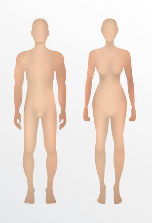 Ilustración de human 3d men and women,vector on white background. - Imagen libre de derechos