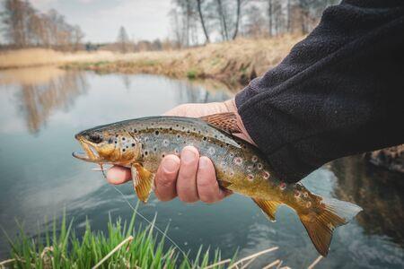Photo pour Fishing - fisherman catch trout on river - image libre de droit