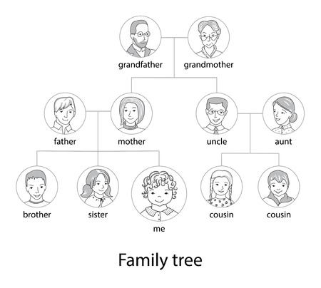 Illustration for Family tree chart thin line style vector - Royalty Free Image
