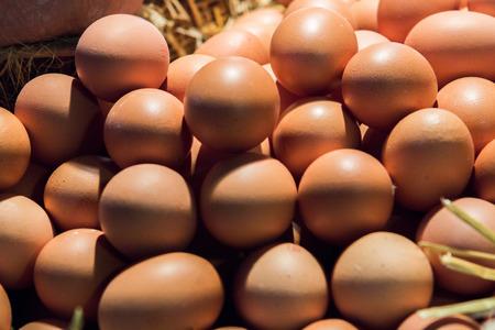 Brown eggs in a supermarket (La Boqueria, Barcelona)