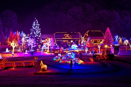 Christmas fantasy - trees and houses in lights on beautiful snowy winter night