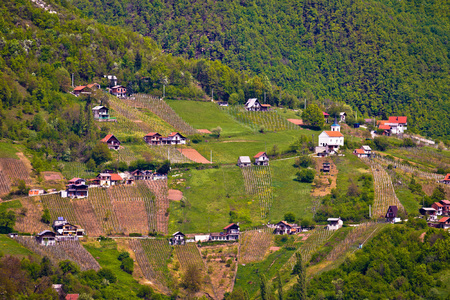 Hills of Plesivica vineyards and cottages, northern Croatia