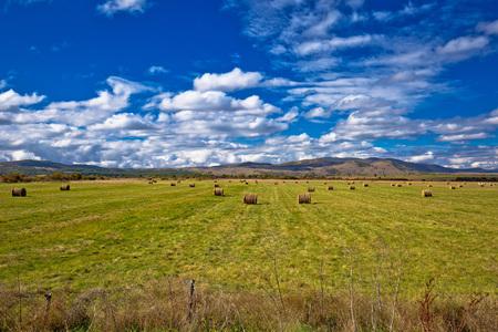 Rural agricultural landscape in Lika region of Croatia