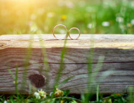 Foto de Two wedding rings on wood in garden. Love concept. - Imagen libre de derechos
