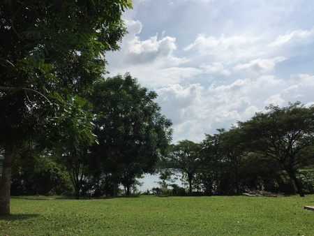 Kampar lake at Malaysia