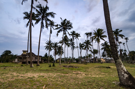 Beautiful traditional fisherman villagesvillage located in Terengganu, Malaysia surrounded by coconut tree and cloudy sky
