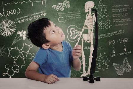 Asian boy studies human anatomy isolated on white
