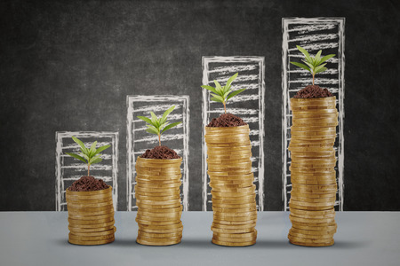 Plants growing up on the golden money coins with business graph background