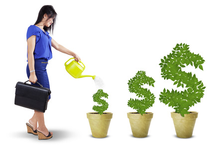 Portrait of businesswoman watering the money trees to keep its growth, isolated over white