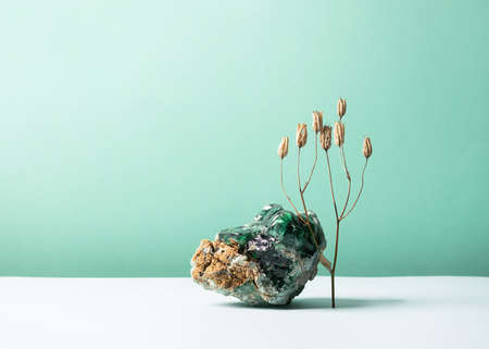 Foto de Abstract composition podium glass o with the texture of natural mineral stone and a sprig of dry plant flower on pastel background. Template for exhibition advertisement of cosmetics items copy space - Imagen libre de derechos