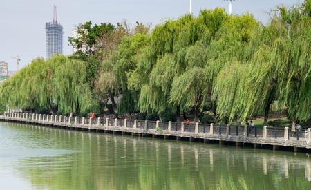 Xiuxiu84181100069
