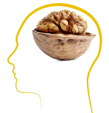 Walnut good brain health £¬Isolated on white background