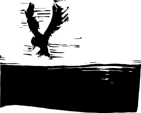 Bird flying in the sky with dark ground.