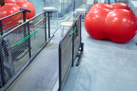 Photo for Empty treadmill in fitness room, red fitball and mirror. Big treadmill for dogs, dog fitness concept. Copy space. - Royalty Free Image