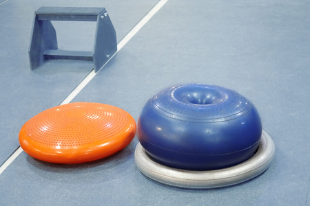 Rubber sport equipment (fitballs and wooden stand) in empty fitness room), different kinds of appliances for fitness. Healthy lifestyle concept. Dog fitness. Copy space.
