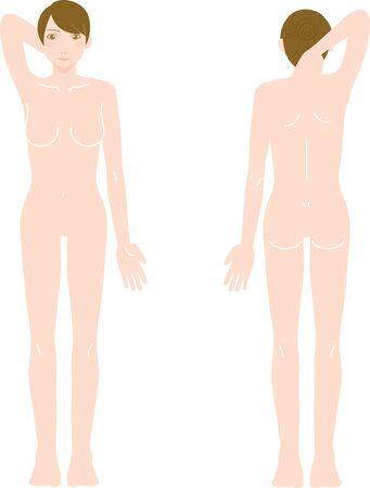 Ilustración de Female Medical Beauty Naked Nude Whole Body Front/Back - Imagen libre de derechos