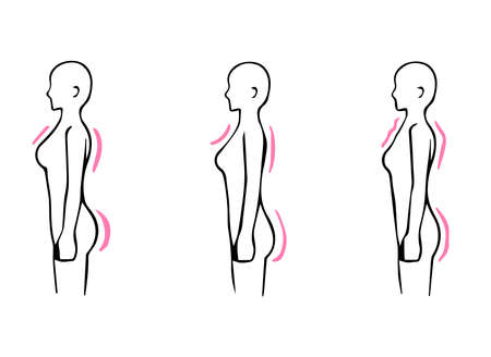 Illustration pour Skeletal Diagnosis 3 Types Body Shape Illustrations Seen From The Side (Straight Wave Natural) - image libre de droit
