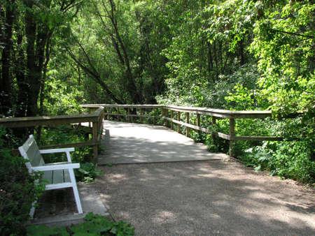 Boardwalk in paradise