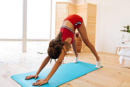 Photo for Yoga workout. Slim young woman with nice braids enjoying yoga workout in the bedroom at home - Royalty Free Image
