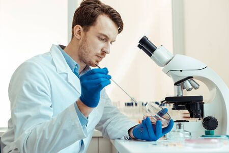 Photo for Scientific study. Intelligent handsome researcher holding a metal stick while conducting his research - Royalty Free Image