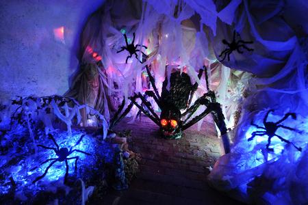 Spidery nest