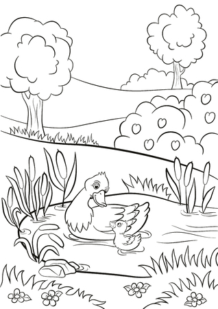Cute Duckling coloring page | Free Printable Coloring Pages | 450x318