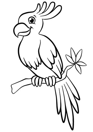 Coloring pages. Birds. Little cute parrot sits on the branch ...