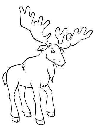 Coloring Pages Animals Cute Elk