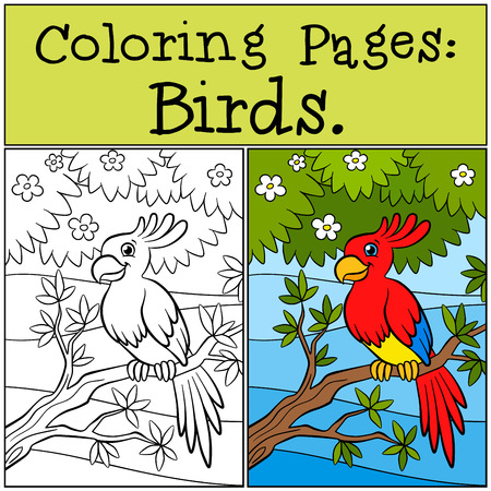 Coloring Pages. Birds. Little Cute Parrot Sits On The Branch ... | 450x450
