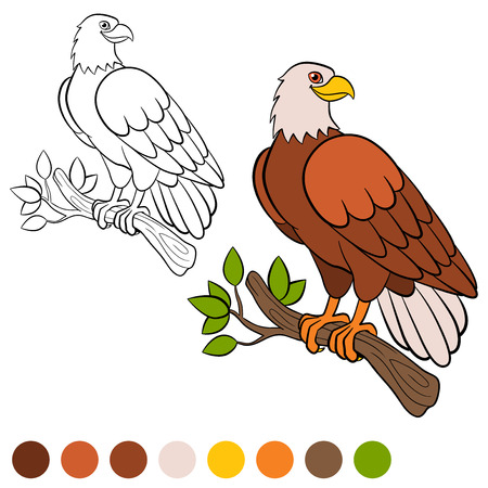 Bald Eagle coloring page | Free Printable Coloring Pages | 450x450