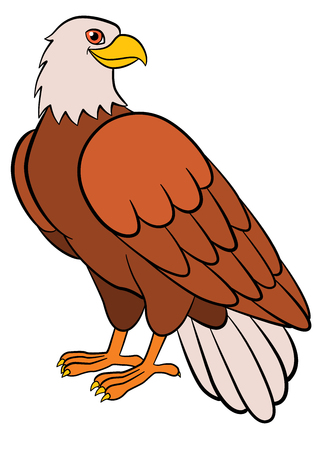 Illustrazione per Cartoon birds for kids: Eagle. Cute bald eagle smiles. - Immagini Royalty Free