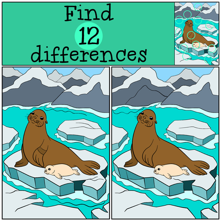 Illustration pour Educational game: Find differences. Mother fur seal lays on the ice floe with her little cute white-coated baby seal and smiles. - image libre de droit