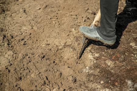 Photo for Dig a garden shovel. Gardening. Selective focus nature - Royalty Free Image