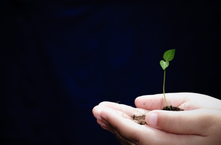 New hope in the beginning of life