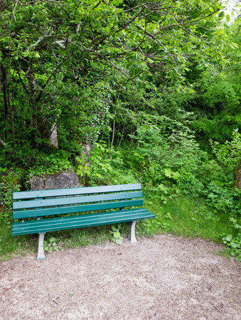 Green bench in forest. Feel of peaceful and happiness.