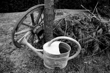 arrosoir et roue ancienne