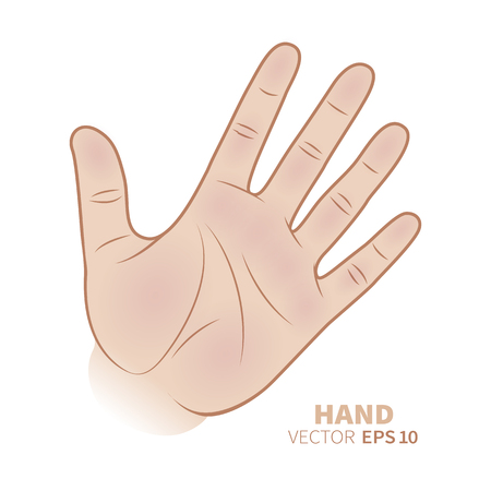 Hand palm symbol  with five fingers isolated on white background. Vector illustration