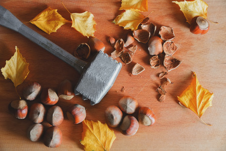 Still life with nuts a filbert on a wooden table. Autumn retro style still life. Photo picture in film style.の写真素材