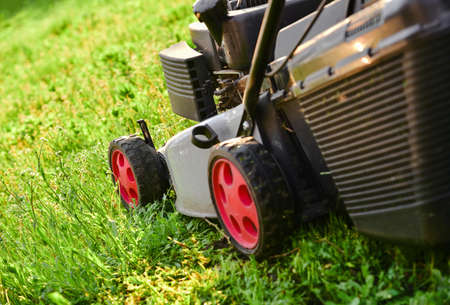 Foto de Lawnmow on the green grass. Housekeeping. Lawn care. Close up view of grass mower - Imagen libre de derechos