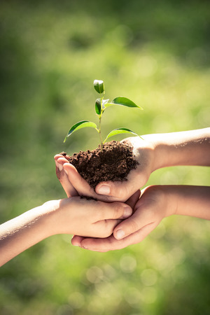 Foto per Children holding young plant in hands against green spring background. Earth day ecology holiday concept - Immagine Royalty Free
