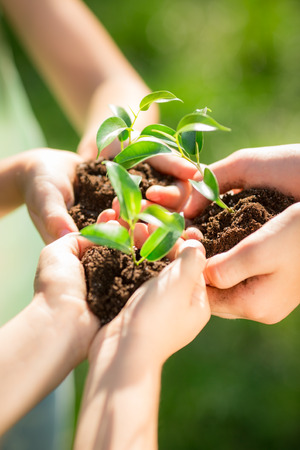 Photo pour Family holding young plant in hands against green spring background. Earth day ecology holiday concept - image libre de droit