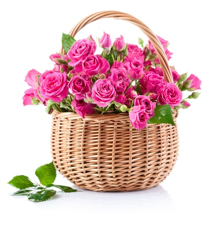 bouquet of pink roses in basket isolated on white background